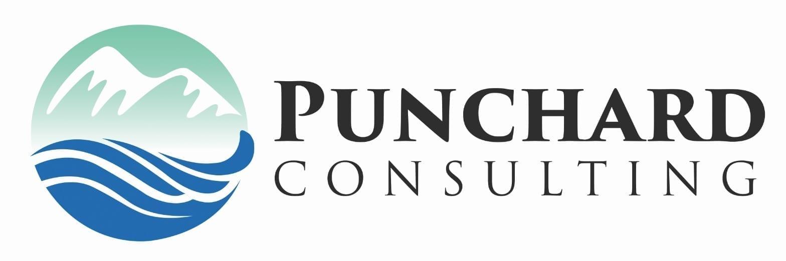 Punchard Consulting Logo