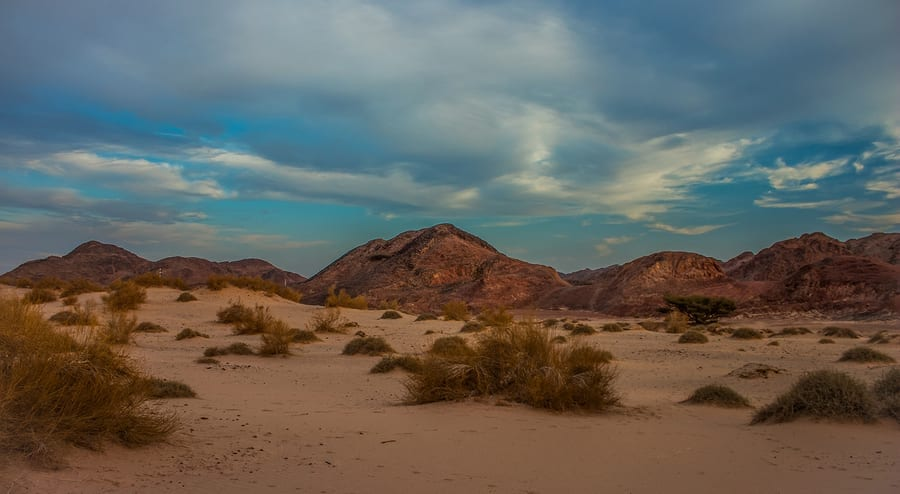 Evening Desert Sand Mountain Tumbleweed Scenery Landscape View